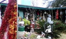 Buddha and yard art
