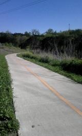 Same trail, headed down.