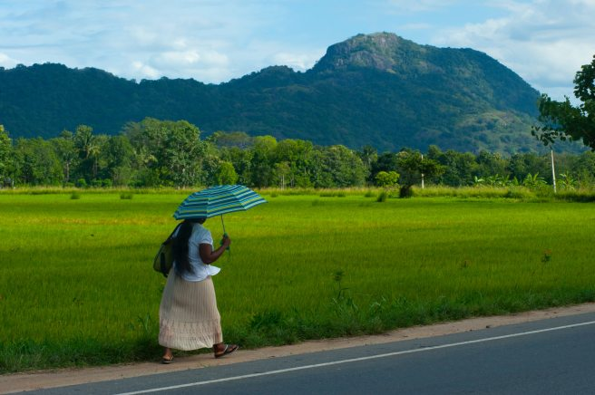 adult-agriculture-asia-walk.jpg
